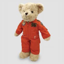 taiwan-airforce-bear