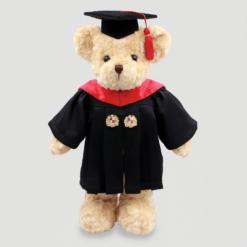 ABAC teddy bear